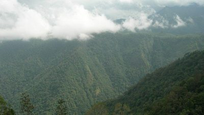 Viaggi Kerala India Turismo responsabile e sostenibile