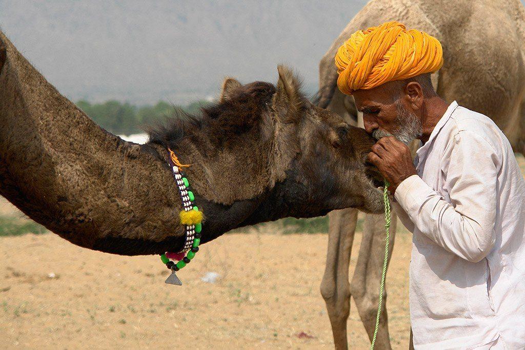Pushkar Festival dei cammelli India Turismo responsabile e sostenibile
