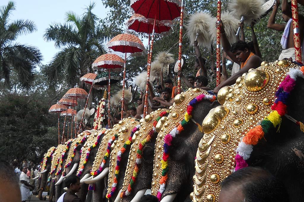 Thrissur Pooram India elefanti Turismo responsabile e sostenibile