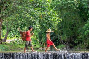 Borneo malese